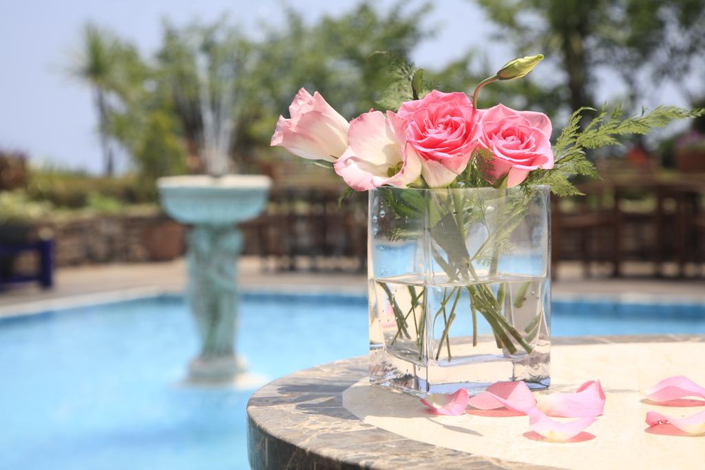 【人気NO.1】迷ったらコレ☆女性の方へアイスクリームプレゼント♪日本三大古泉の伊豆山温泉でほっこり