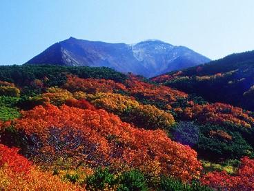【紅葉×秋旅】神々の遊ぶ庭「旭岳」の秋を先取り★旭岳ロープーウェイチケット付★心に残る絶景を胸に…