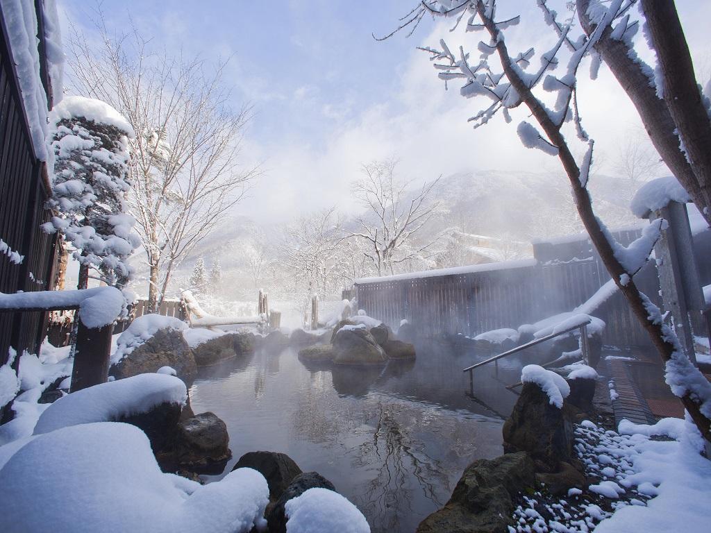 冬の贅沢といえば・・・「雪見露天風呂」