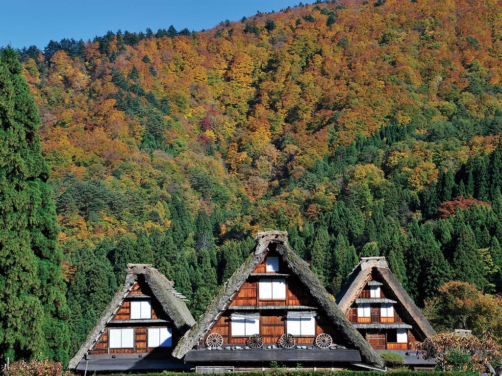 【景観】秋の合掌造り