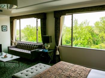 【森側確約】~静寂という贅沢~フォレストビュー客室でのんびり過ごす シンプ...