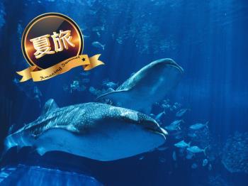 【夏旅応援】期間限定★2連泊以上だからお得★美ら海水族館チケット付プラン(朝食付)