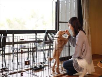 【ペット同室‐1泊2食】小型犬~中型犬 愛犬と泊まれる和洋室ドッグフレンドリールーム モニター宿泊プラン