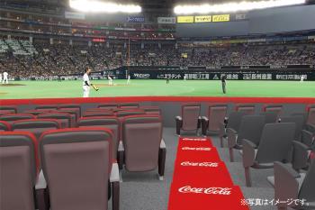 【野球観戦☆2019】迫力・興奮・感動のコカ・コーラシートS席プラン(2列目)