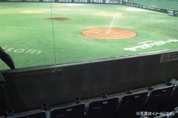 【野球観戦☆2019】1日4席限定!バックネット裏最前列☆<みずほ>プレミアムシートSS席プラン