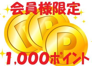 ☆【1000ポイント】ほっくんビジネスプラン