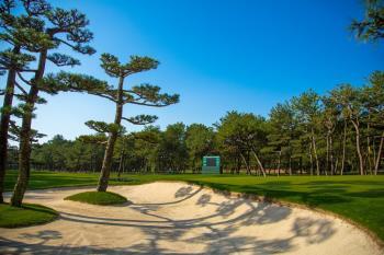 【朝食付】平日限定 リゾートゴルフ満喫 25th Anniversary Special...