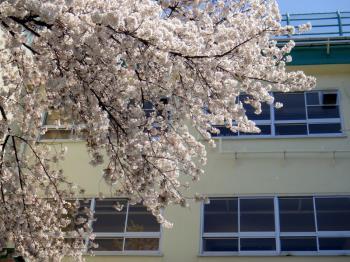 【ようこそ札幌!】3つの特典付き♪春の引越し&転勤応援プラン