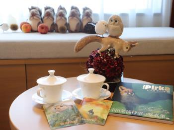 ≪コンセプトルーム第3弾≫写真家半田菜摘氏の作品をはじめとした、北海道のキュートな小動物が大集合~ロールケーキ付き~朝食付き