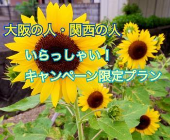 photo