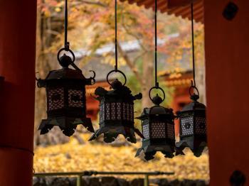【GoToトラベルキャンペーン割引対象】【お日にち&1組限定】朝の春日大社特別参拝と奈良公園プライベートガイドウォーク/日本料理