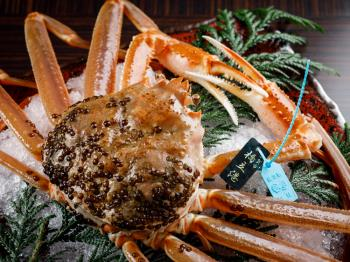 <Go To トラベルキャンペーン割引対象>【タグ付き活蟹会席】加賀の極上タグ付「橋立蟹」を堪能・旨さとろける活蟹の玉手箱