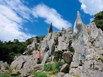 【大石林山】★☆大自然のパワーで運気アップ!?★☆大石林山チケット付(食事なし)