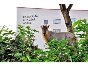 OPEN!!ホテルテトラリゾート立山国際ホテル!!開業記念プラン・夕食付