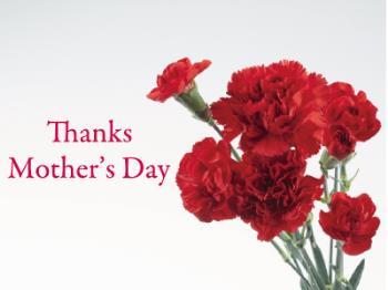 【お母さんありがとう】母の日に贈る「癒し」の体験ギフト