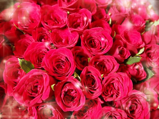 108本のバラの花束で一生に一度のプロポーズを・・・<br>画像はイメージです
