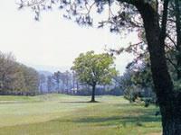 出水ゴルフクラブコース一例