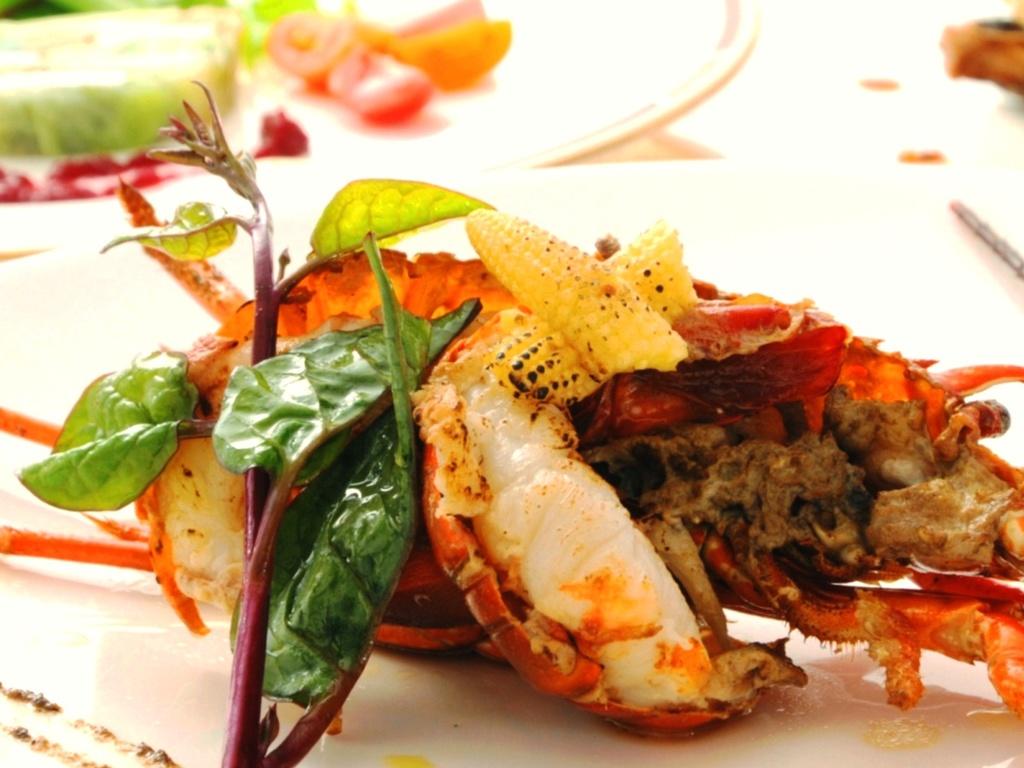お食事は、豊かな自然の緑を目で楽しめるテラス席が人気です