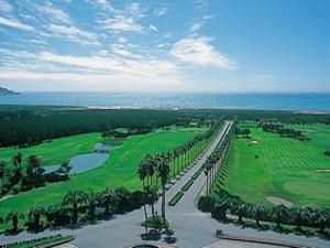 椰子の木など南国の植物に囲まれ、太平洋を眺めながらのプレーが楽しめます