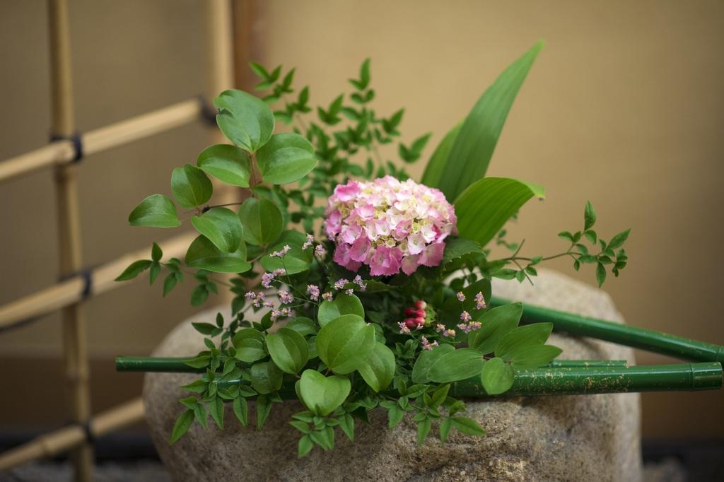 6月 館内の生け花もアジサイで華やかに