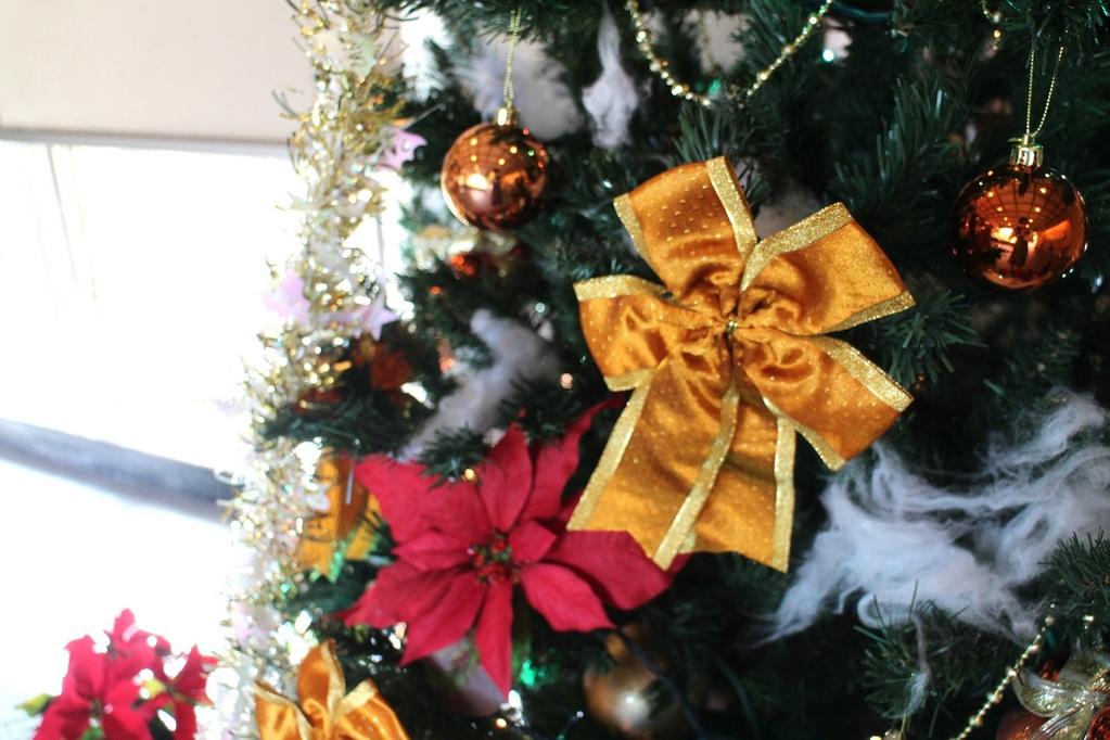 12月は館内もクリスマスムードに