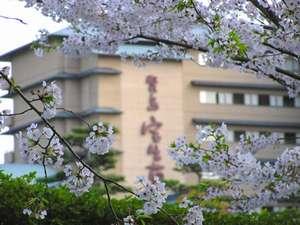 4月上旬の桜の風景