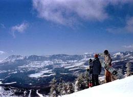 標高1800Mのパウダースノーをお楽しみ下さい