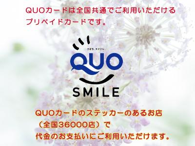 QUOカードがお財布にあれば、心強いこと間違いなし!