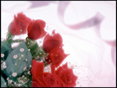 特別な日を特別な人と…思い出に残る記念日をお過ごし下さい