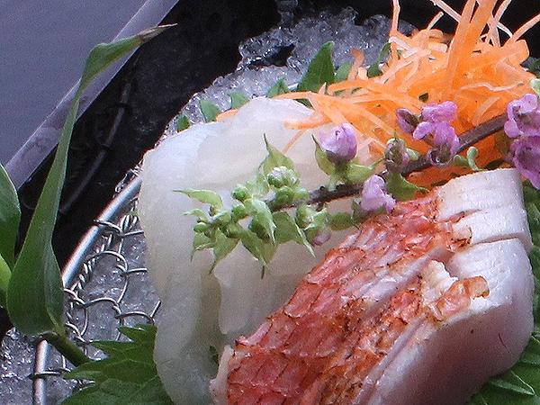 その時期に一番美味しい食材を一番美味しい食べ方で。料亭旅館ならではのお料理をお楽しみいただきます。