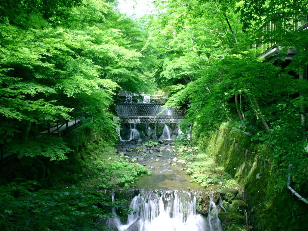 敷地内の散策路。清流沿いは木漏れ日が心地よく、まるで京都の貴船のような風情が楽しめます