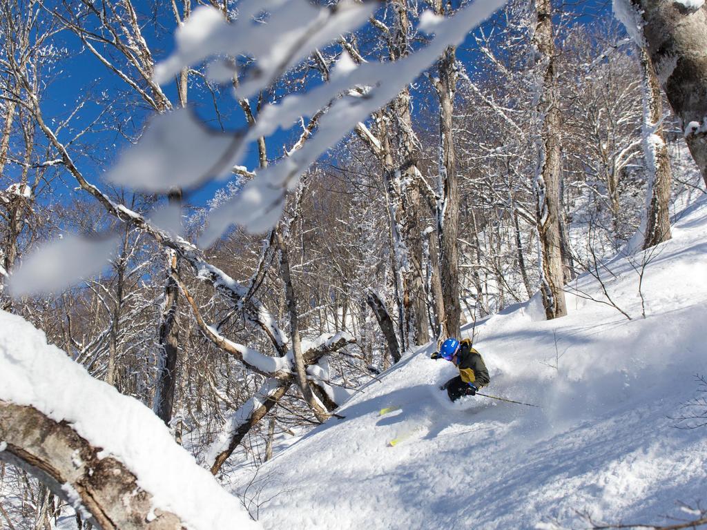 第5リフト山頂は野尻湖・北信五岳を一望できる絶景スポット!