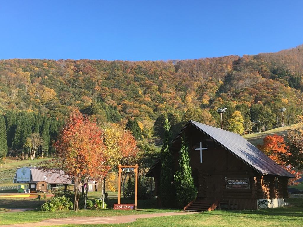 ホテル周辺の紅葉は例年10月下旬ころから *イメージ