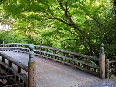 山中温泉 こおろぎ橋