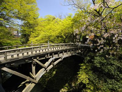 ECO乗りクーポンで加賀温泉郷をめぐる旅♪