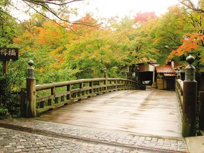 紅葉の季節『こおろぎ橋』。紅葉が名勝地に一層彩りを添えます。