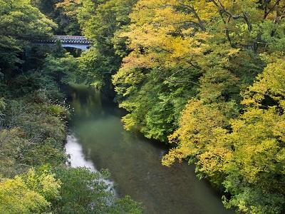 豊かな緑と渓流のせせらぎ。自然の癒しあふれる『鶴仙渓』