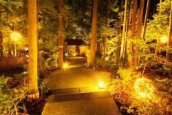 離れの貸切風呂「あけび」夜は、庭園をイルミネーション☆