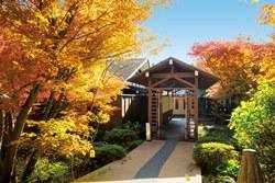 ホテルから徒歩3〜4分の場所にある、貸切風呂「鬼燈亭」。11月上旬〜下旬にかけて、庭園がキレイに彩られます。