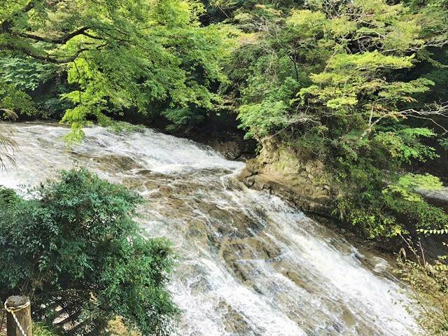 眼前には千葉の名瀑『粟又の滝』が広がります。