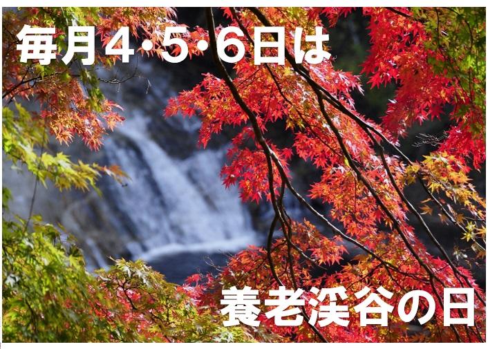 毎月4・5・6日は養老渓谷の日!