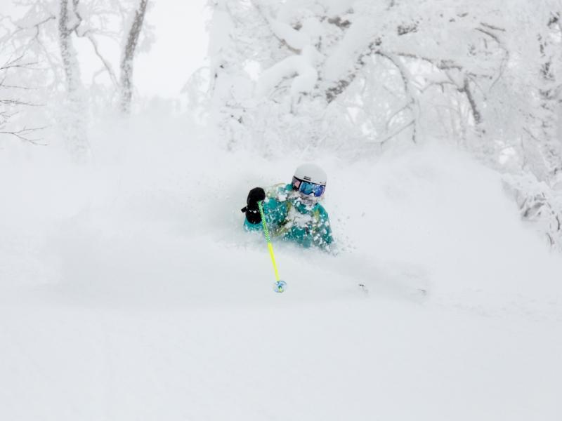 <降雪たっぷり1月><積雪たっぷり2月><Br>どちらも3山37コースを楽しむのにお勧めです!