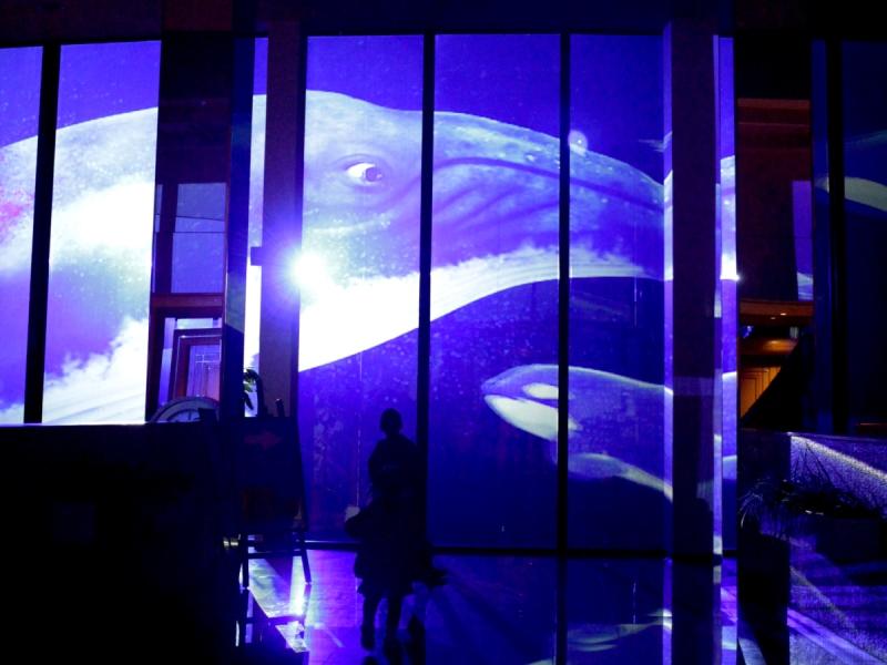 【まるで窓の外は海?!】ホテル壁面ガラスに投影!<br>プロジェクションマッピング!<br>期間:〜2018/10/27迄、毎晩開催。観覧無料