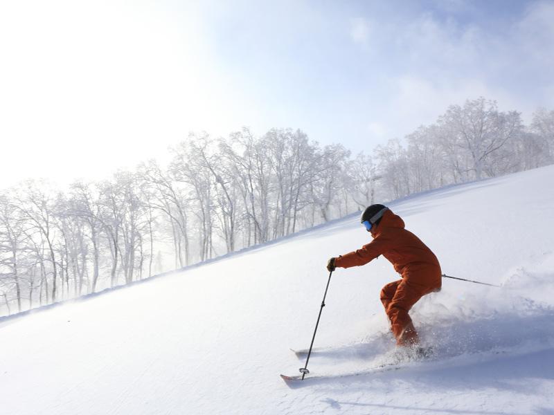 ≪スキー場≫浮遊感を味わえる未圧雪コースと確かな技術で整う圧雪バーン、3つの山に豊富なコースが揃い、フード付きリフトも充実。