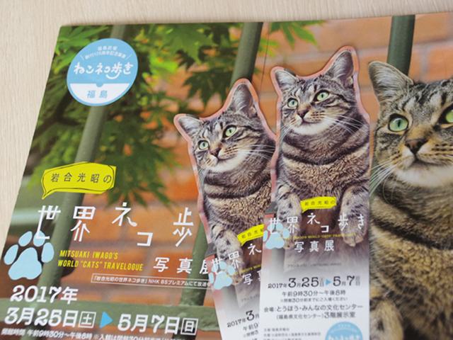 世界ネコ歩き写真展 ※イメージ