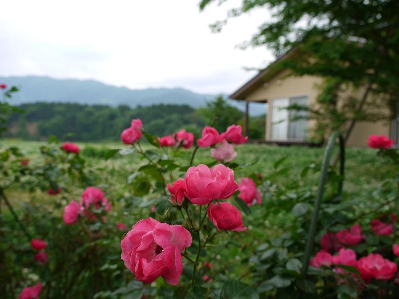 国宝 瑞龍寺(写真提供:高岡市)