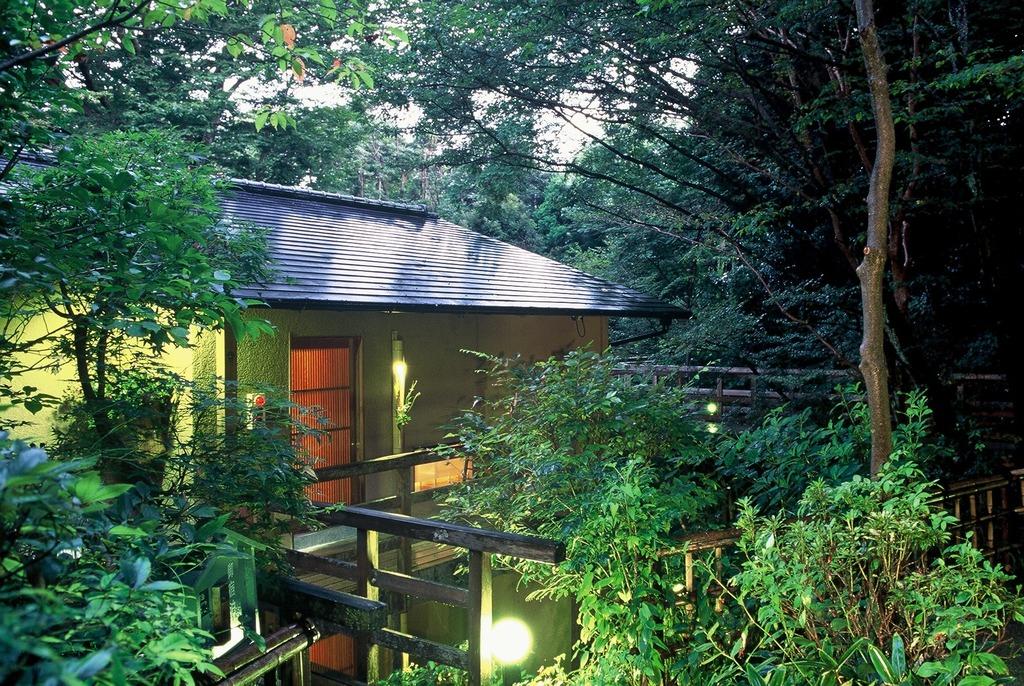 森の中に佇む各客室