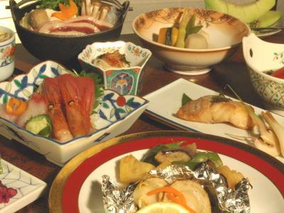 Japanese Plate Dinner