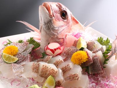 """真鯛が産卵期の春を迎えピンク色に体を輝かせることから""""桜鯛""""と呼ばれます。"""