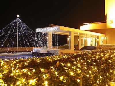 夜をロマンチックに彩るクリスマスシーズンのイルミネーション